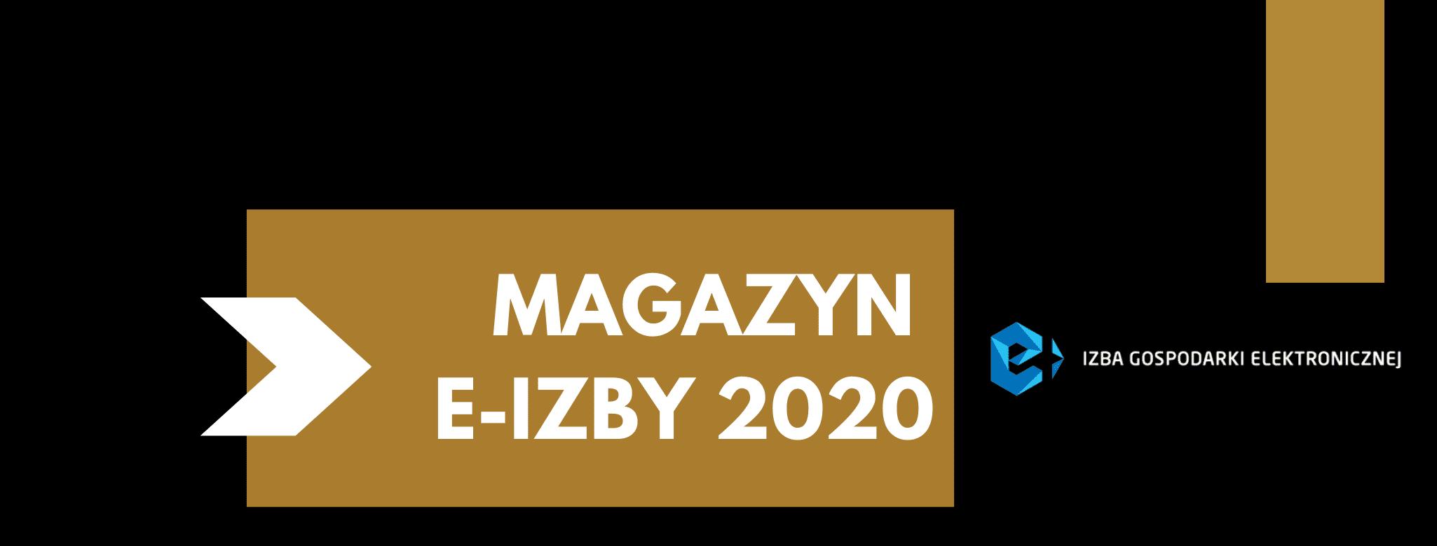 Magazyn e-Izby 2020 – zobacz podsumowanie roku i plany na 2021!